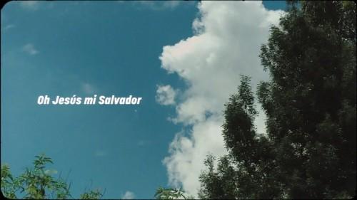 MOSAIC MSC Mi Salvador