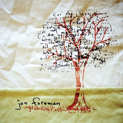 Jon Foreman The Cure For Pain